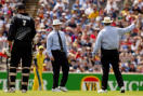 cricket3.jpg
